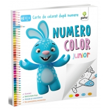 NumeroColor • Junior